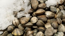 Steamer Clams Before the Wine, Herbs, Garlic and Butter